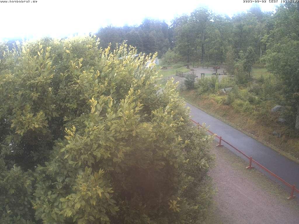 Livekamera från skidspåret, Högbo Bruk